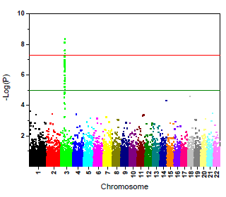 Manhattan Plot for GWAS