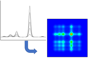 2D Correlation Spectroscopy Analysis